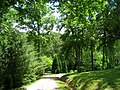 University of Tennessee Arboretum - roadway.JPG