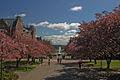 University of Washington (6932791496).jpg