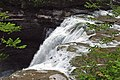 Upper Falls (Genesee Gorge, Letchworth State Park, New York State, USA) 11 (20127363515).jpg
