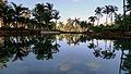 Upper Lagoon Atlantis Paradise Island photo D Ramey Logan.jpg