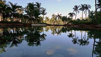 Atlantis Paradise Island - Upper Lagoon reflective pond at Atlantis Paradise Island