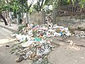 Very bad dustbin of dhaka.jpg