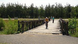 Veslarsky kanal Racice 28.JPG