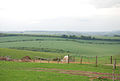 View of Wylye Cow Down Bottom - geograph.org.uk - 445837.jpg