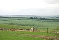 View of Wylye Cow Down Bottom - geograph.org.uk - 445837.jpg