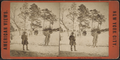 View on the mount, Central Park, from Robert N. Dennis collection of stereoscopic views.png
