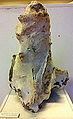 Vuursteen met zeeëgels, Eben-Emaël, fossielencollectie Museum Het Land van Valkenburg, Limburg.jpg