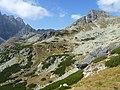 Vysoké Tatry, Mengusovská dolina, září 2011 (50).JPG