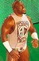 WWE Raw 2016-04-04 19-49-53 ILCE-6000 2625 DxO (28306729241) (cropped).jpg