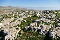 Wadi-Makukh-510.jpg