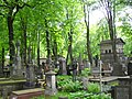 Warszawa, Cmentarz Powązkowski SDC11701.JPG