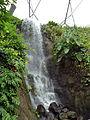 Waterfall - Rainforest Biome @ Eden Project (9757250472).jpg