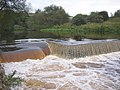 Weir on the River Calder, below Strangstry Wood, Elland - geograph.org.uk - 255701.jpg