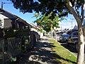 West End QLD 4101, Australia - panoramio (67).jpg