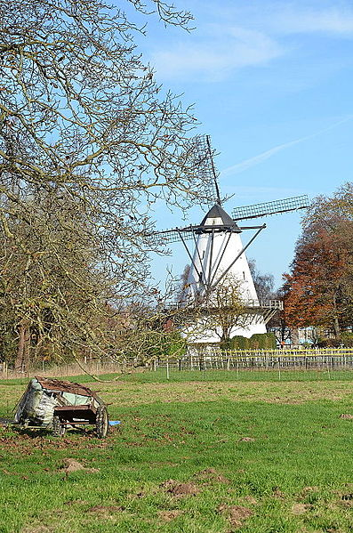 Windmolen Steenen Molen