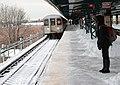Winter Storm 2013 (8459503282).jpg