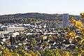 Wolfesberg - panoramio (7).jpg