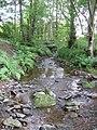 Wooley Burn - geograph.org.uk - 531378.jpg