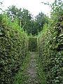 Wrocław, Park Brochowski 2009-09-06 - 140 labirynt grabowy.jpg