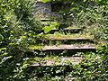 Wuppertal - Untere Herbringhauser Talsperre 05 ies.jpg