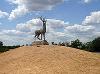 Yakymivka Deer.jpg