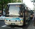Yamakobus 1307.JPG