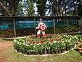 Yercaud 44th flowershow-7-yercaud-salem-India.jpg