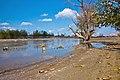 Zayandeh rood river رودخانه زاینده رود پس از باز شدن مجدد - panoramio (1).jpg
