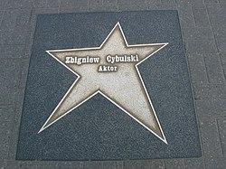 Gwiazda w Alei Gwiazd w Łodzi