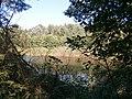 Zolotonis'kyi district, Cherkas'ka oblast, Ukraine - panoramio - юра запеченко (27).jpg