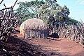 Zulu village 2.JPG