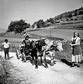 """""""Mašino"""" za mlatit peljejo iz Šmihela v drugo vas. Na mašini je mlatiški pušeljc (prenos starega običaja) 1957.jpg"""