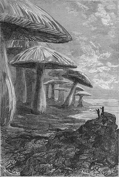 Archivo:'Journey to the Center of the Earth' by Édouard Riou 38.jpg