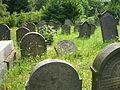 Židovský hřbitov ve Vamberku 17.7.2010 - obr. č. 3.JPG