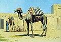 Верблюд во дворе караван-сарая.jpg