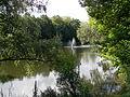 Верхнє озеро-ставок.jpg