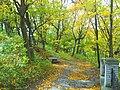 Вінничина, Муровані Курилівці парк Жван 12.jpg