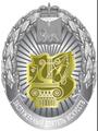 Заслуженный деятель искусств Псковской области.png