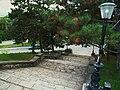 Лестница у Лермонтовского сквера. Спуск.JPG