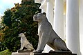 Львы на стилобате дворцового павильона императора Александра I архитектора Е.Д. Тюрина. 1825 г. Коломенское.JPG