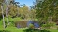 Молодіжний парк-пам'ятка садово-паркового мистецтва, Фастів 02.jpg