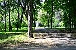 Наводницький парк в Києві. Фото 3.jpg