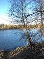 Озеро Черное.jpg