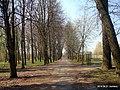 Парк - panoramio (252).jpg