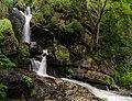 По пътеката за Боянски водопад.jpg