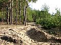 Противопожарная борозда (SE) - panoramio.jpg