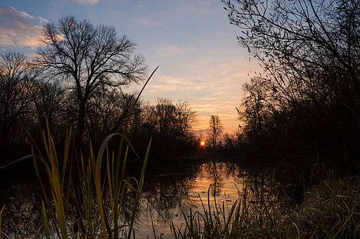 Ранок перед зимою