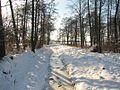 Ручей под снегом. Creek under the snow. - panoramio.jpg