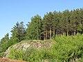 Уктусский лесной парк - скалы.jpg