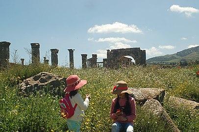 الاثار الرومانية جميلة سطيف بالشرق الجزائري.jpg